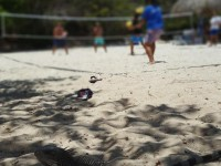 beachtennis_curacao2