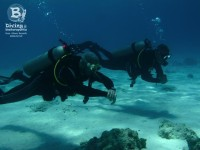 b_diving_cas_abao_curacao_IMG_8687