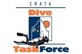 dive task force