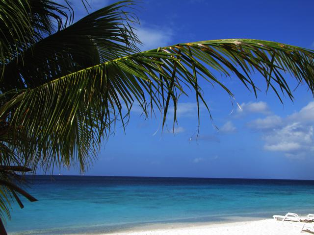 sandy beach curacao